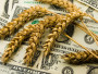 223875d-wheat-money.jpg
